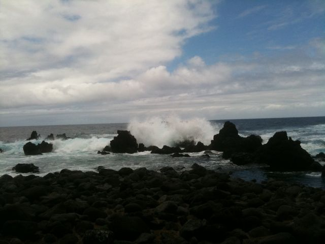 waves crashing on cliffs at Laupahoehoe on Big Island of Hawaii, taken during tour at Joy Gardner's Vibrational Healing Workshop